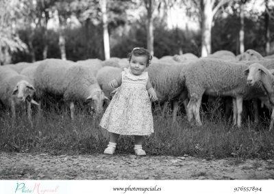 niños y ovejas
